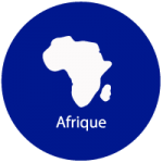 Dynamics Solution - Afrique